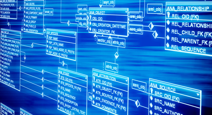 Why Businesses Should Know The Importance of Big Data